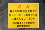 カンムリカイツブリ保護のため作成した看板
