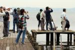 霞ヶ浦湖畔の水鳥等を観察する参加者