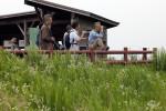 妙岐ノ鼻野鳥観察小屋から野鳥の観察をする参加者