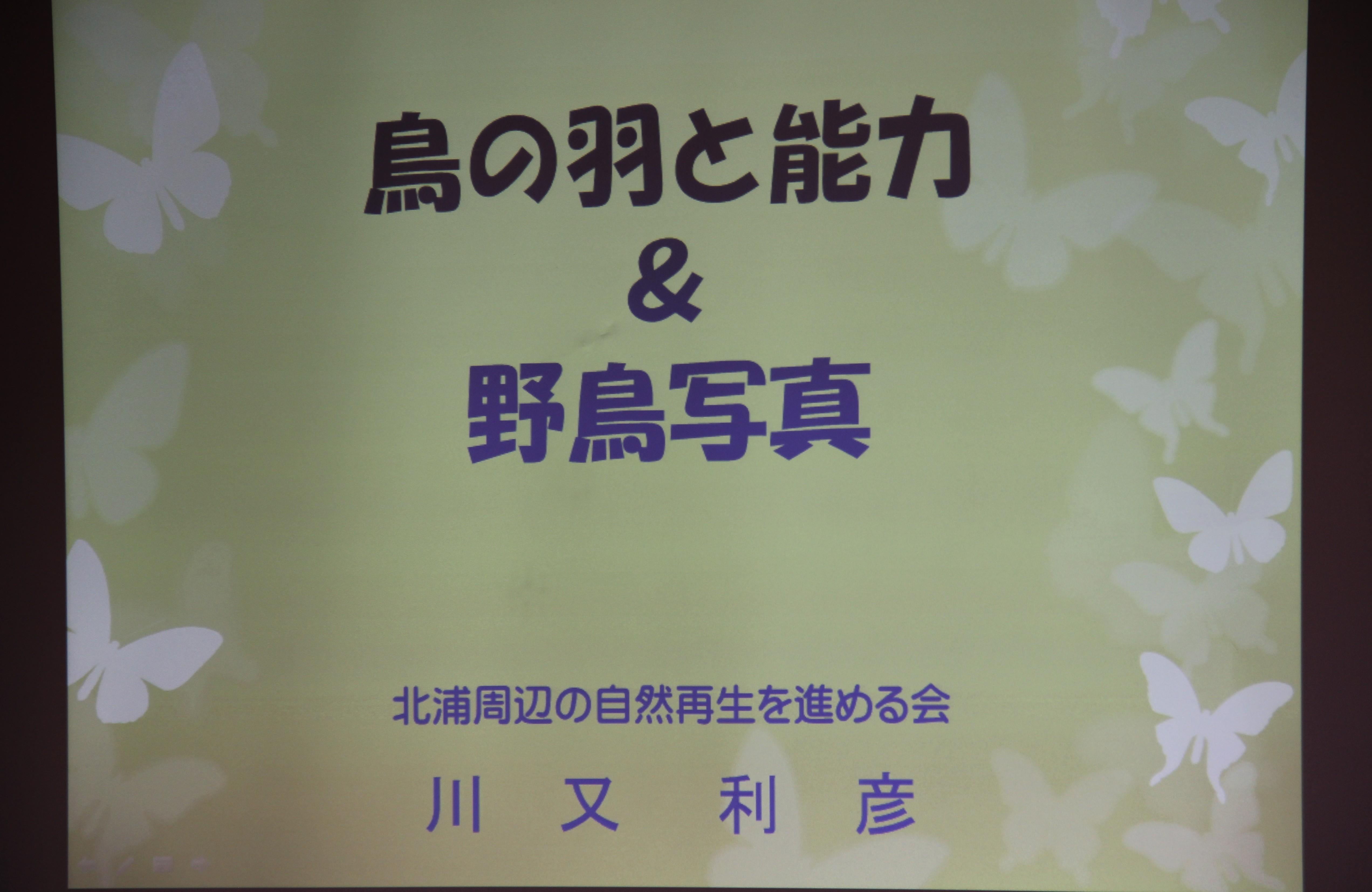 IMG_4293-2